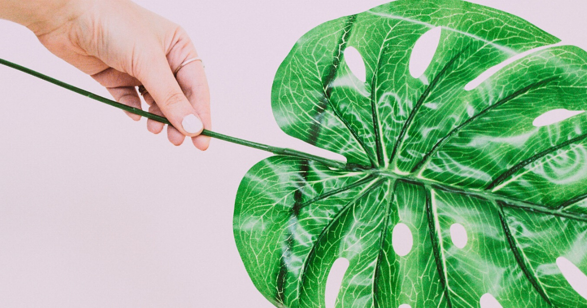 Plastic Free nella cosmetica: le vie del green sono infinite!