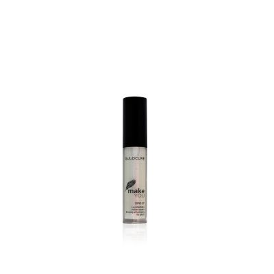 Lip Gloss Shine-Up